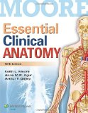 Essential Clinical Anatomy (Moore)